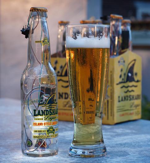 make a solar light from beer bottle