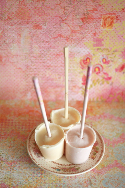 Homemade frozen yogurt pops