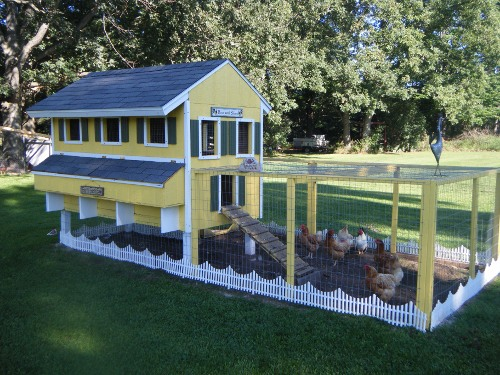 chicken coop design house