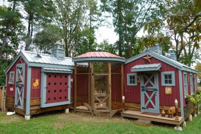 chicken coops designs of backyard chicken coops