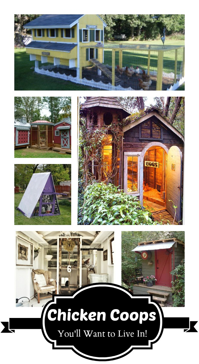 Chicken Coops I Want to Live In