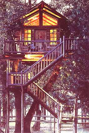 Unusual Places to Stay - Treehouses