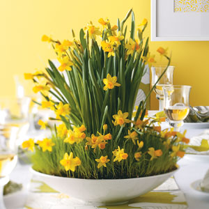 decorating ideas for easter - daffodils
