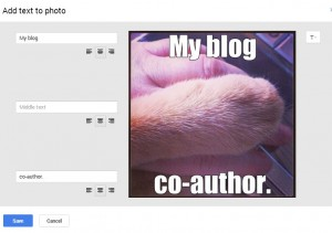 Learn how to create a photo meme in Google Plus. Super easy!